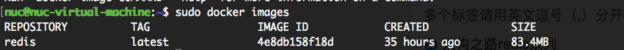 Docker下安装redis1